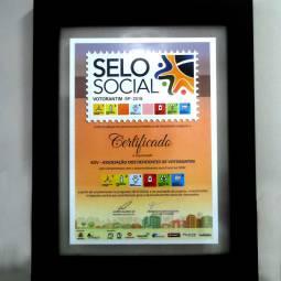Selo Social 2016